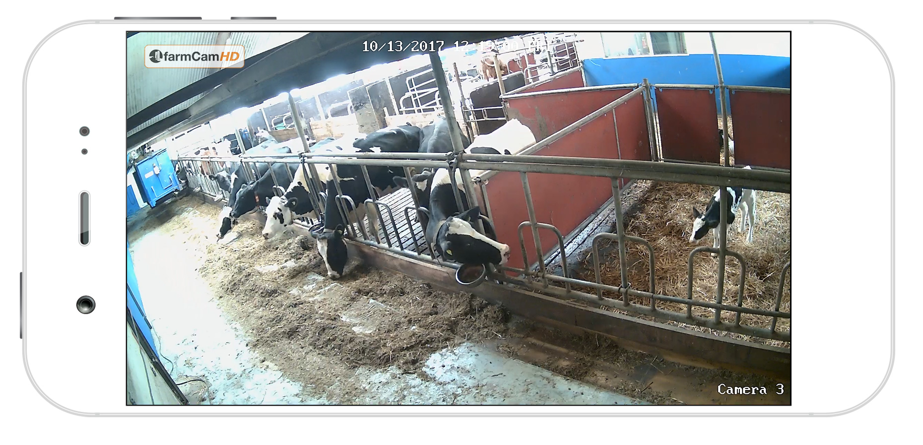 FarmCam HD - How the picture looks like